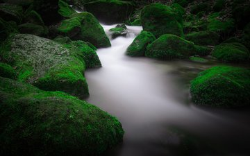 water, river, nature, stones, moss