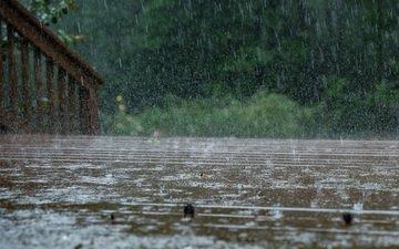 water, macro, drops, bridge, rain