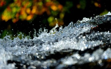 water, nature, macro, background, squirt