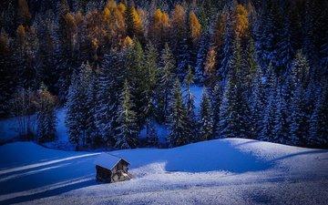 природа, лес, зима, домик