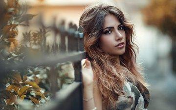 листья, девушка, портрет, ветки, взгляд, забор, модель, макияж, локоны, шатенка, алессандро ди чикко