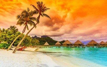nature, landscape, sea, beach, palm trees, resort, bungalow, tropics