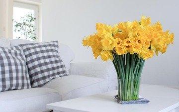 цветы, букет, нарциссы, желтые