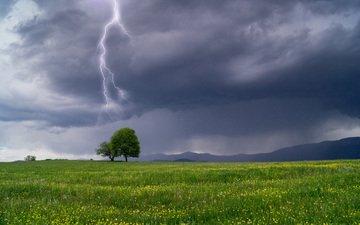 дерево, пейзаж, молния, поле, гроза