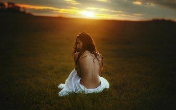 трава, природа, закат, девушка, поле, модель, сидит, шатенка, tj drysdale
