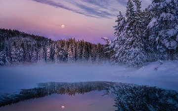 вечер, озеро, природа, лес, зима, луна