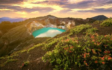 flowers, lake, mountains, nature, indonesia
