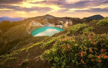 цветы, озеро, горы, природа, индонезия