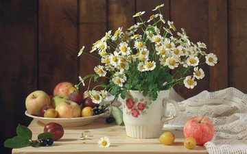 flowers, fruit, apples, chamomile, bouquet, still life, plum