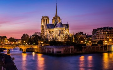 night, lights, the city, paris, france, notre dame cathedral, notre dame