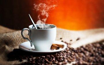корица, зерна, кофе, чашка, кофейные зерна, мешковина