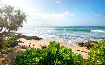 природа, пейзаж, море, пляж, курорт, тропики