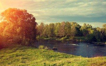деревья, река, солнце, природа, лес