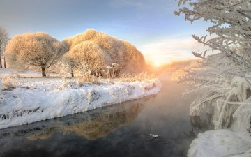 trees, river, nature, winter, morning, frost