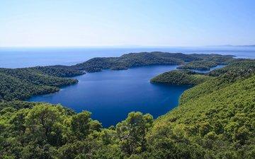 lake, nature, forest, landscape