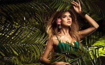 девушка, взгляд, модель, пальма, волосы, лицо, джунгли, фотосессия
