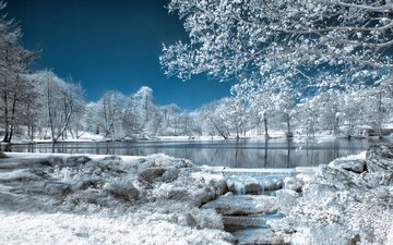 the sky, trees, lake, nature, winter, park, frost