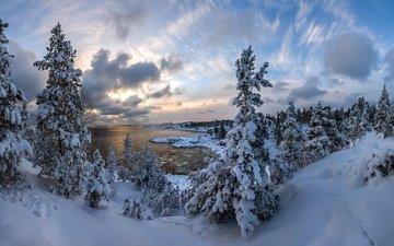 небо, облака, озеро, снег, природа, лес, зима, елки, ладожское озеро