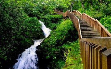 ladder, waterfall, stream, gorge, norway, trondheim, edoardo trabace, hiking in bymarka