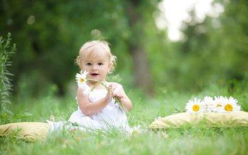 цветы, настроение, девочка, ромашки, ребенок