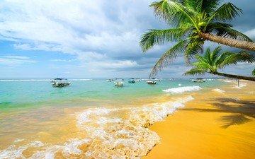небо, облака, природа, пейзаж, море, пляж, горизонт, яхты, пальмы, курорт, тропики