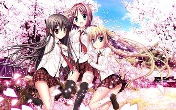 art, anime, sakura sakimashita, tsubame haruno, karasuma miyako, minato miu