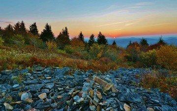 горы, природа, дерево, камни, пейзаж, туман, осень