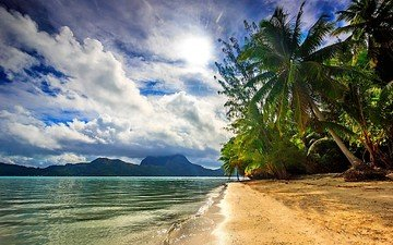 clouds, nature, sea, beach, palm trees, island, tropics, bora bora, french polynesia