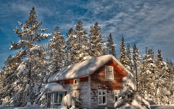 the sky, trees, snow, winter, house