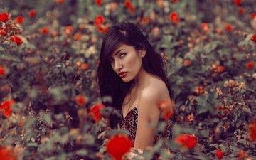 цветы, девушка, взгляд, модель, волосы, лицо, mara saiz