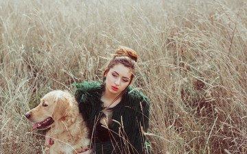 девушка, поле, взгляд, собака, волосы, лицо, золотистый ретривер, mara saiz