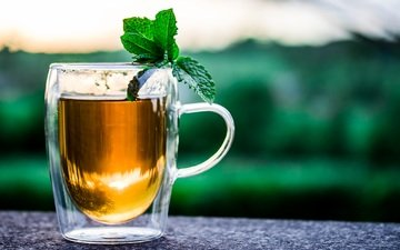 mint, drink, mug, tea, herbal tea