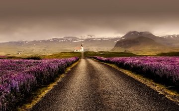 road, mountains, clouds, field, lavender, horizon, mountain, iceland
