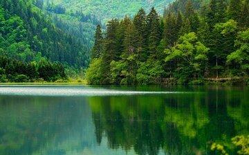 озеро, горы, природа, лес, отражение, азия, китай, леса, цзючжайгоу, сычуань