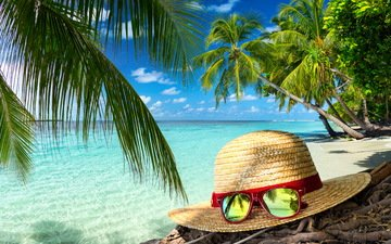 summer, glasses, palm trees, the ocean, tropics, hat, vacation