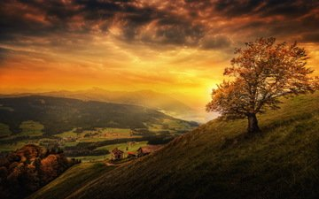 the sky, clouds, trees, mountains, sunset, landscape, switzerland, home, meadows