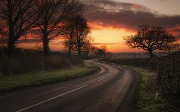 the sky, road, night, trees, nature, landscape, field, sunset, twilight