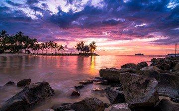 stones, shore, sunset, coast, palm trees, the ocean, island, tropics, malaysia, sabah, tanjung aru, kinabalu, borneo, shangri-la