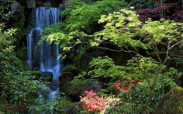 trees, nature, waterfall, garden, usa, oregon, portland