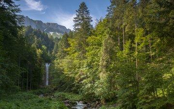 небо, трава, облака, деревья, горы, камни, водопад, альпы