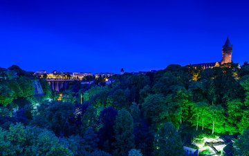 night, trees, lights, panorama, bridge, castle, home, luxembourg