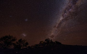 the sky, night, trees, stars, silhouettes, the milky way