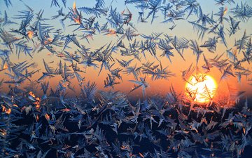 figure, the sun, winter, morning, pattern, frost, window, glass