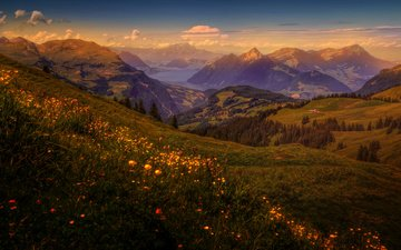flowers, grass, trees, lake, mountains, field, dawn, slope, houses, switzerland, forest, meadows