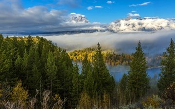 clouds, trees, river, mountains, forest, landscape, autumn, usa, wyoming, grand teton
