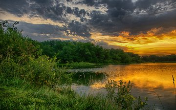 the sky, clouds, trees, lake, nature, greens, forest, sunset, the bushes, summer, pond, glow