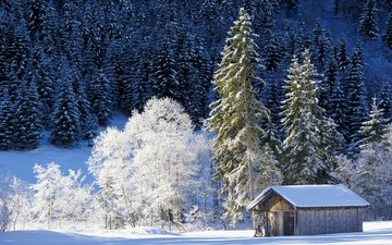 trees, snow, nature, forest, winter, house, germany, bayern