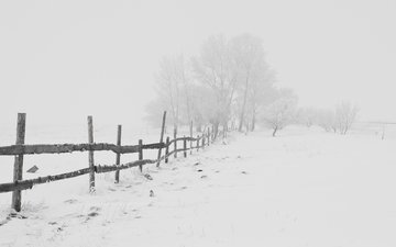 road, trees, snow, winter, frost, the fence, blizzard