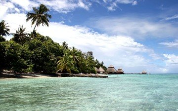 the sky, shore, beach, bay, palm trees, the ocean, island, the maldives