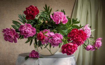 flowers, table, bouquet, vase, tablecloth, curtain, peonies, composition